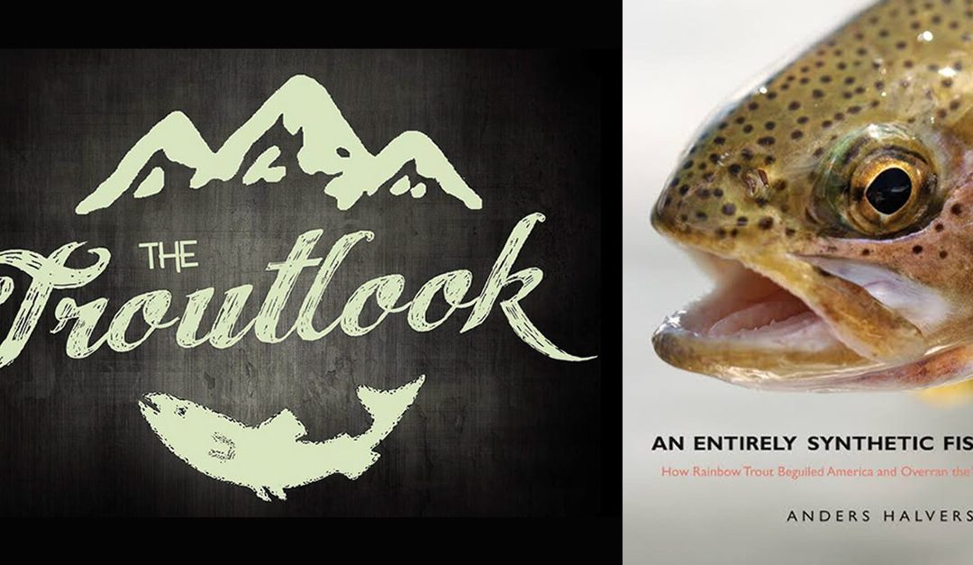 Clarity and Science about Wild vs Stocked Trout, from Halverson's 'An Entirely Synthetic Fish,' and from The Troutlook