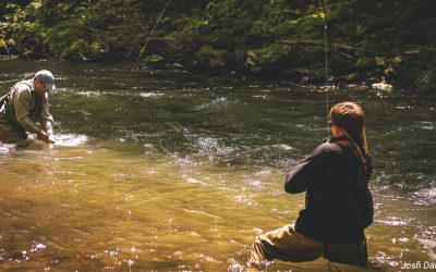 Fifty Fly Fishing Tips: #10 — Mend Less