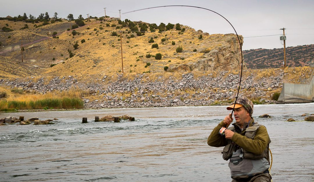 Fifty Fly Fishing Tips: #9 — Fight Fish Fast