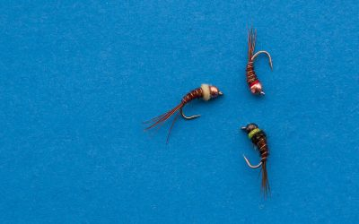 Fifty Fly Fishing Tips: #25 — Confidence is King — Find your favorite fly theme and vary it