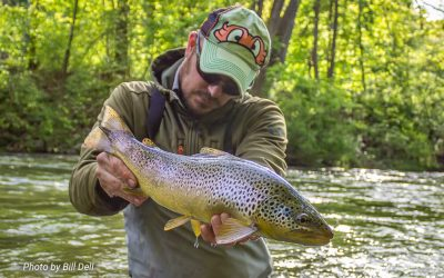 Fifty Fly Fishing Tips: #33 — Fish the Edge