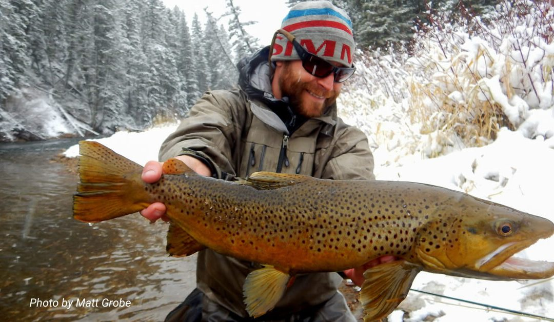 Fly Fishing in the Winter — Head, Shoulders, Knees and Toes