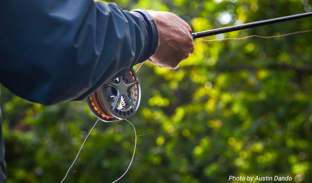 Fly Fishing Quick Tips — Put the fish on the reel