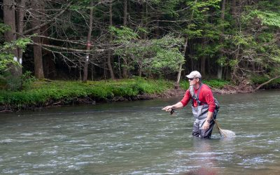 Dry Fly Fishing — The Stop and Drop