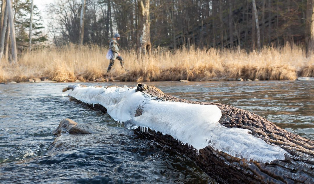 Fly Fishing in the Winter — Egg Tips