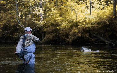 Fighting Big Fish With Side Pressure — Not With the Rod Tip Up